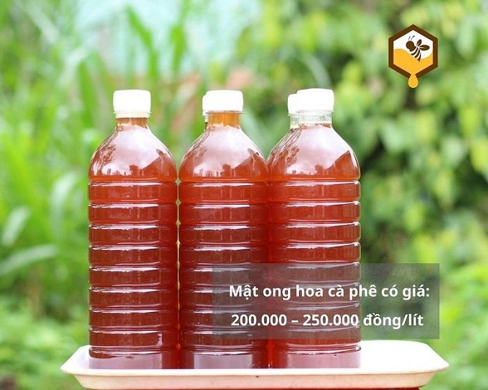 mat-ong-hoa-ca-phe-min-3
